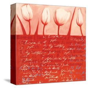 Tulips Parade in Red by Anna Flores