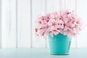 Cherry Blossom Flower Bouquet on Wooden Background by Anna-Mari West