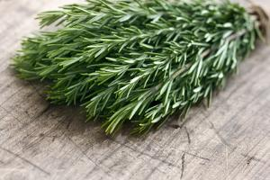 Green Fresh Rosemary Herbs by Anna-Mari West