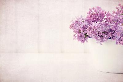Purple Lilac Spring Flowers on Vintage Textured Background by Anna-Mari West
