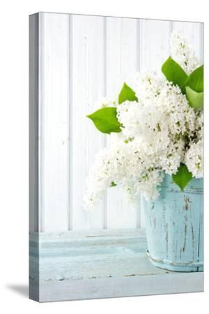 White Lilac Spring Flowers in a Blue Vase by Anna-Mari West