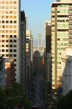 Bay Bridge from Downtown San Francisco by Anna Miller