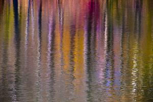 Colorful abstract reflection in lake water by Anna Miller