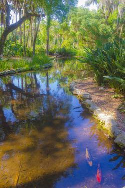 USA, Florida. Washington Oaks Gardens State Park pond. by Anna Miller