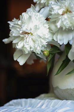 White peonies in cream pitcher by Anna Miller