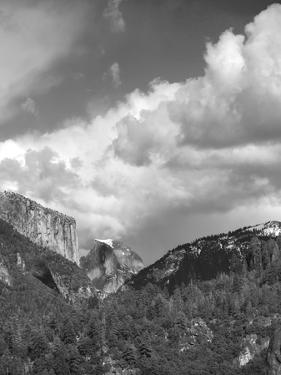 Yosemite Valley, CAlifornia,USA by Anna Miller