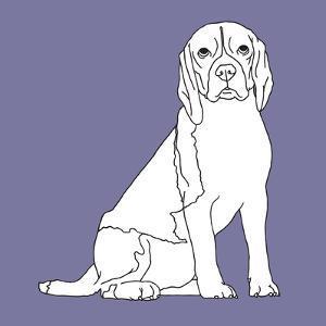 Beagle by Anna Nyberg
