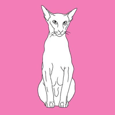 Cat Pointy Ears