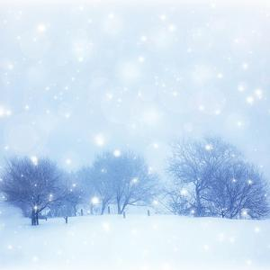 Beautiful Snowy Landscape by Anna Omelchenko