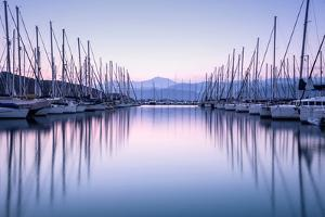 Large Yacht Harbor in Purple Sunset Light by Anna Omelchenko