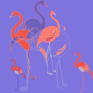 Flamingoes by Anna Platts
