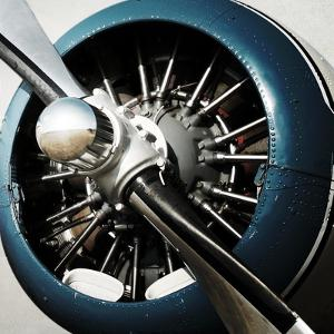 Aeronautical I by Anna Polanski