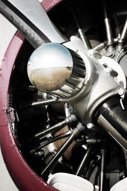 Aeronautical II by Anna Polanski