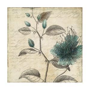 Blue Botanical II by Anna Polanski