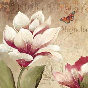Magnolia by Anna Polanski