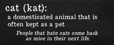 Cat Definition by Anna Quach
