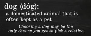Dog Definition by Anna Quach