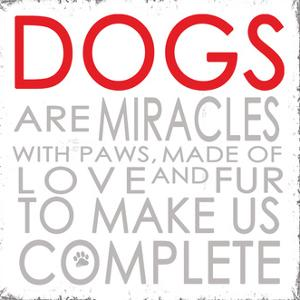 Dogs by Anna Quach