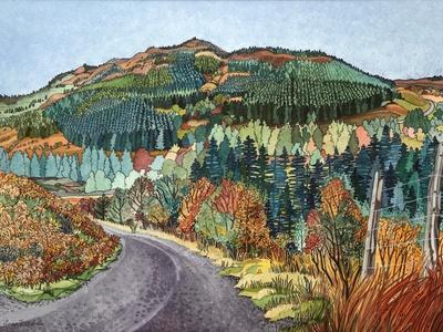 Road to Torloisk, 2008