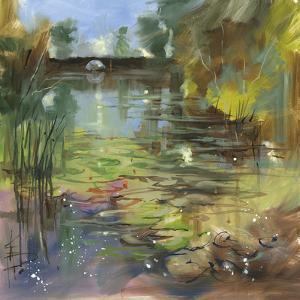 Lily Pond - Calm by Anne Farrall Doyle