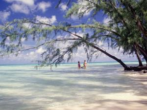 View of Couple Wading in Water, Cayman Islands by Anne Flinn Powell