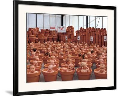 123 Pots by Anne Geddes