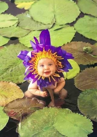 Baby Pond by Anne Geddes
