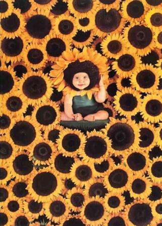Sunflower by Anne Geddes