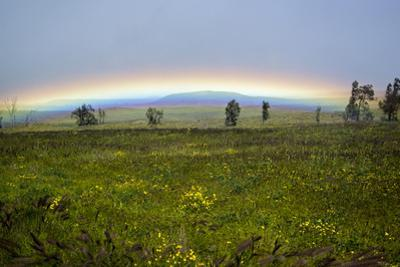 A Rainbow Arches Above the Hawaiian Landscape by Anne Keiser
