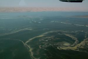 Aerial View of Namibia's Skeleton Coast by Anne Keiser