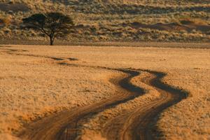 Dirt Road Near Sossusvlei, Namibia by Anne Keiser