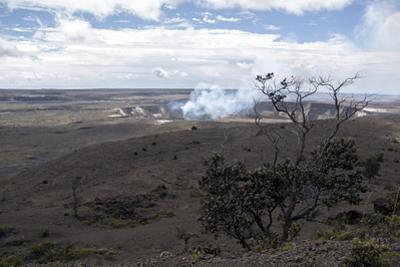 Kilauea Crater in Hawaii Volcanoes National Park by Anne Keiser