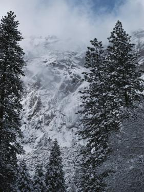 Scenic of Snow-Covered Mountains and Fir Trees by Anne Keiser