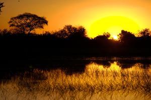 Sunset, Kwetsani Camp, Botswana by Anne Keiser