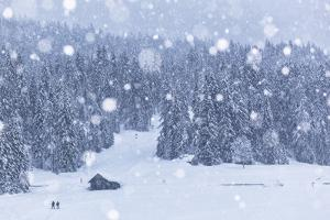 Italy, Veneto, Dolomites, Winter in Sappada by Anne Maenurm