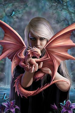 Anne Stokes - Dragonkin
