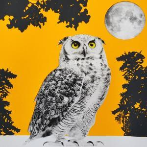Moonbathing by Anne Storno