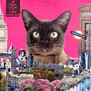 Urban cat by Anne Storno