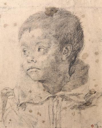 Portrait d'un Jeune Garcon by Annibale Carracci