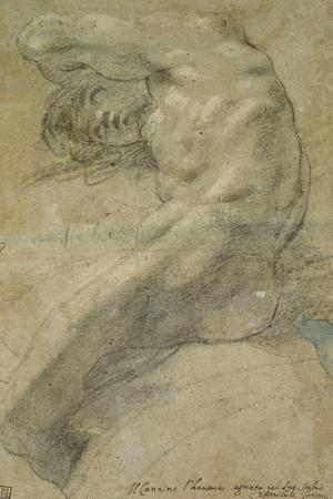 Study of a Nude Man