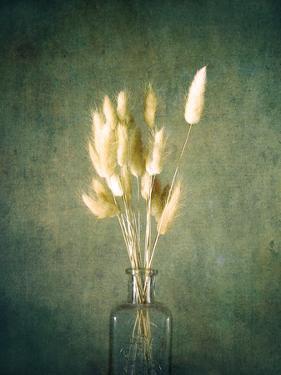 Farmhouse Bouquet by Annie Bailey