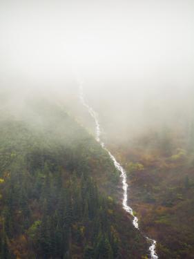 Flowing Through The Fog by Annie Bailey