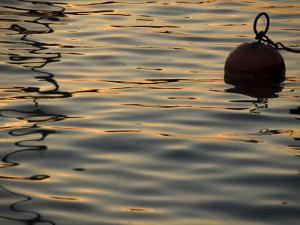 Sunlight Reflected in Rippled Water and a Buoy on Lake Zurich by Annie Griffiths Belt
