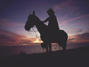 Horse and Rider Silhouetted on a Hill Above the Pacific Ocean by Annie Griffiths