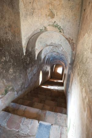 Terracotta Stairs Leading to Royal Apartments from the Terrace in Palace of the Ahom Kingdom