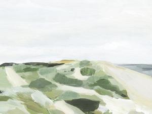 Coastline Greenery I by Annie Warren
