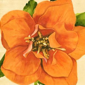 Copper Petals I by Annie Warren