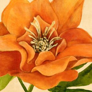 Copper Petals II by Annie Warren