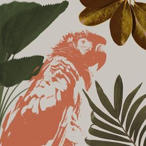 Graphic Tropical Bird I by Annie Warren