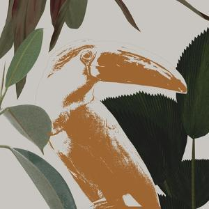 Graphic Tropical Bird III by Annie Warren